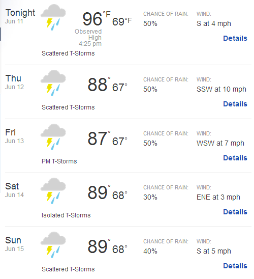 5 Day Weather Forecast for Pinehurst   weather.com
